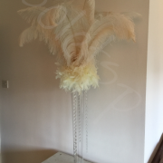 new-ostrich-feather