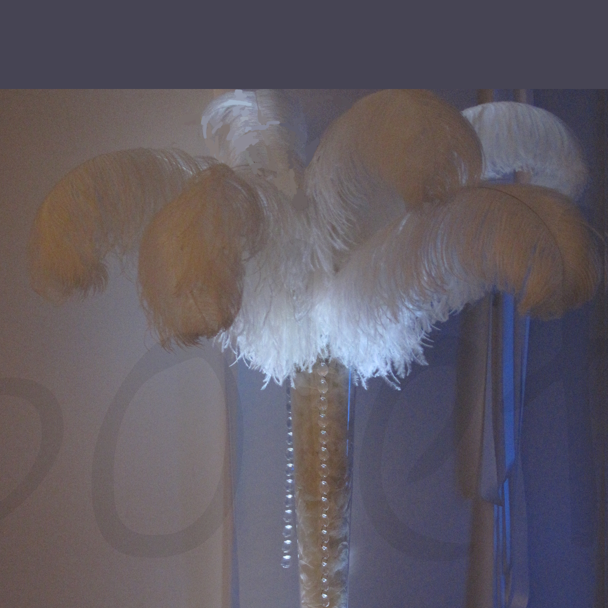 ostrich-feather-2