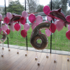 balloon-decorations-foil-shape