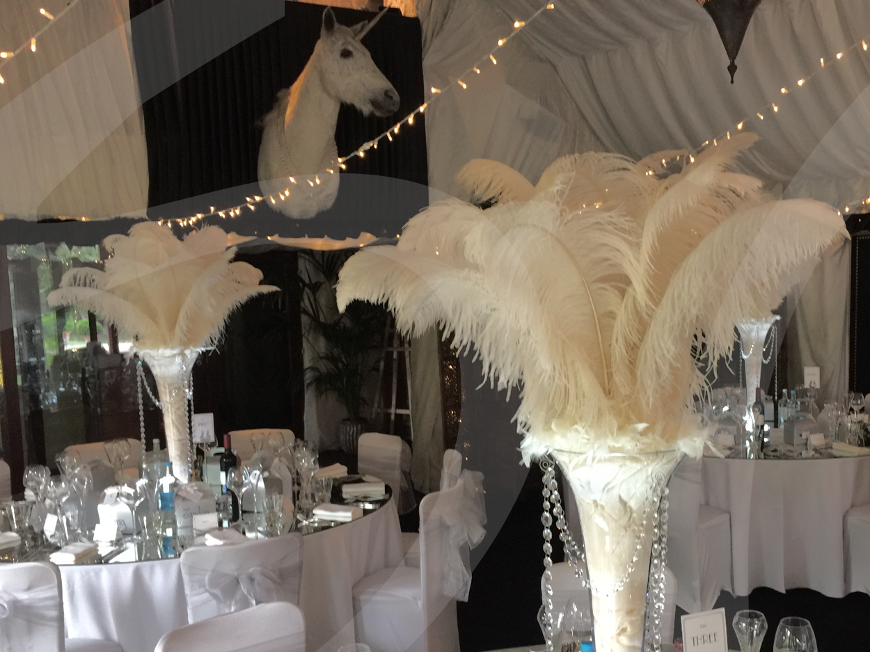 Extra large ostrich feather decoration so lets party