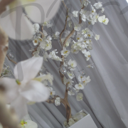 orchid-room-decoration