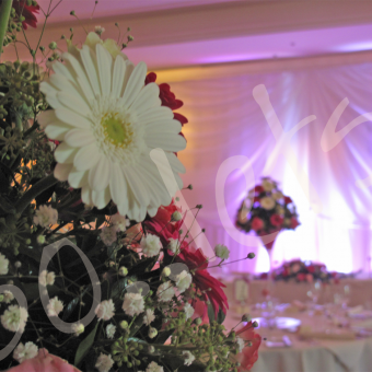wedding-decoration-hire