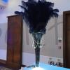 decoration-hire-slp