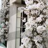flower-event-decoration
